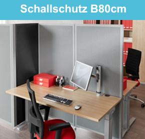 Schallschutz B80cm